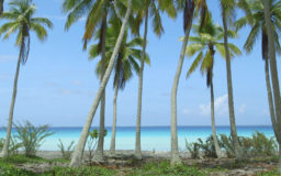 TAHITI, L'INVENTION DU PARADIS